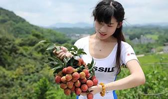 米赛尔单车卖荔枝了!